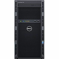SRV DELL T30, E-1225 3.3 Gz, 2x2TB, 1x8GB MEM