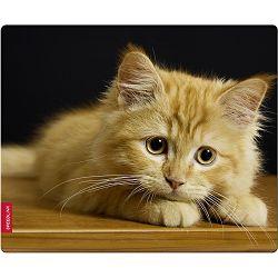 Podloga za miš SPEEDLINK SILK Baby Cat