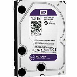 Hard disk WD Caviar Purple 1TB