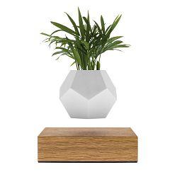 Lebdeća tegla za biljke FLYTE Lyfe