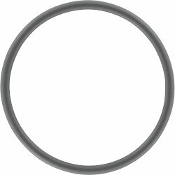 O-prsten NIKON WP-O2000