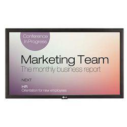 Profesionalni ekran LG 22SM3B (FHD, 22