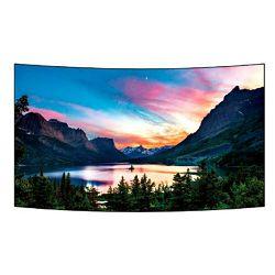Profesionalni ekran LG 55EF5C (OLED, FHD, Open Frame, 55