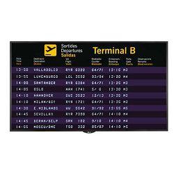 Profesionalni ekran LG 55SH7DB (FHD, 55