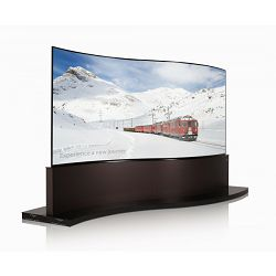 Profesionalni ekran LG 65EE5PC (1x2, OLED, UHD, Curved, Dual-View, 65